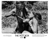 Revolution and sexy nurses in The Hot Box (1972)